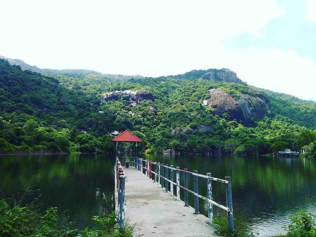 Hồ Soài So cũng là một địa điểm sống ảo lý tưởng cho các bạn trẻ. Tour du lich An Giang