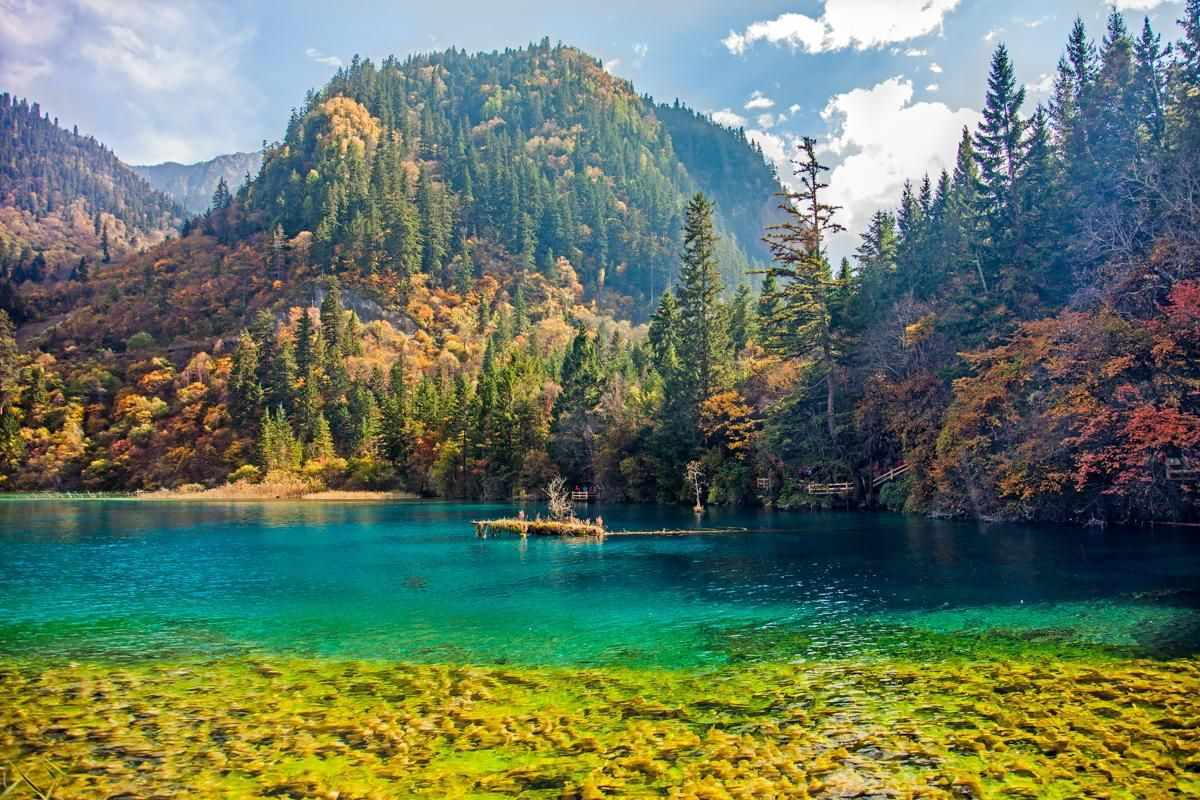 Đi tour châu Á đến Trung Quốc, bạn sẽ ngỡ ngàng trước vẻ đẹp như tiên cảnh của Cửu Trại Câu.