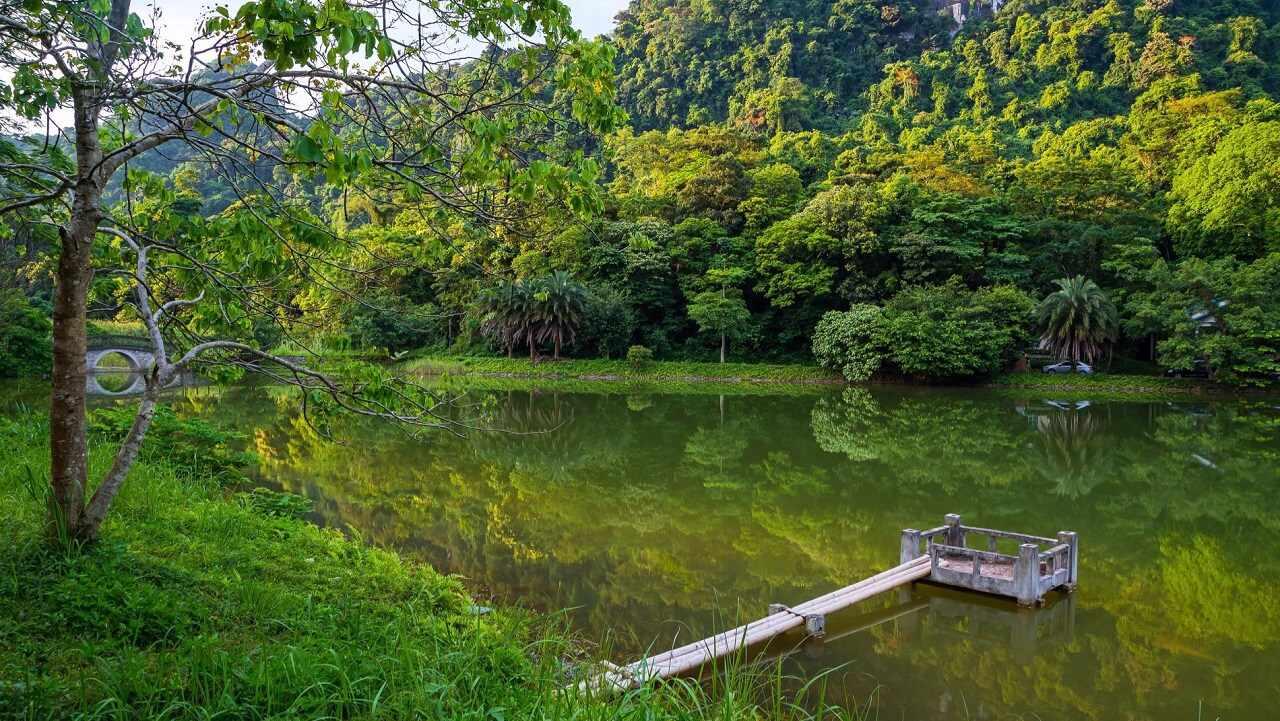 Vườn Quóc gia Cúc Phương sẽ đem đến một không gian đa dạng sinh học vô cùng thú vị và độc đáo. Tour du lich Ninh Binh.