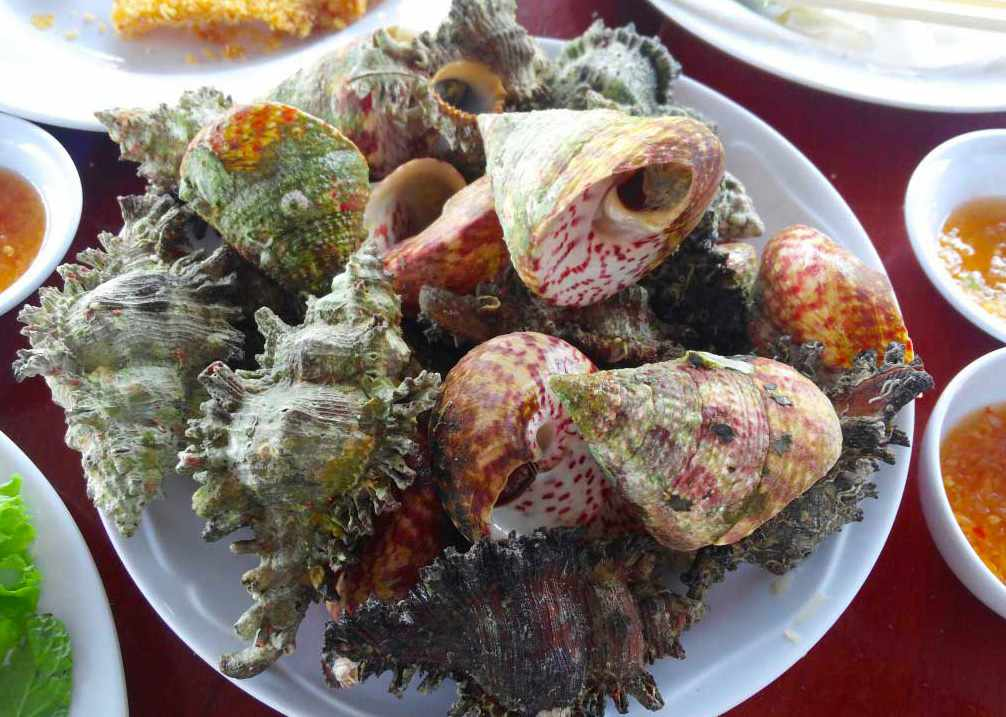 Nếu đi tour Ninh Thuận, ốc nón chắc chắn là món ăn nên được thử càng sớm càng tốt.