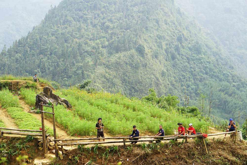 Tour Sapa - Thung lũng Mường Hoa - Nơi hội tụ những vẻ đẹp Tây Bắc