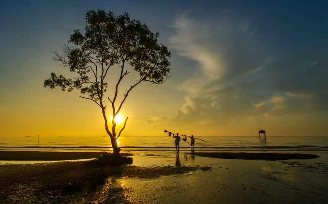 Bình minh tinh khôi trên biển Tân Thành - điểm đến tour Tiền Giang cực kỳ hấp dẫn.