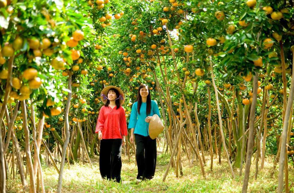 Miệt vườn Cái Bè cũng là một điểm tham quan tour du lịch Tiền Giang hấp dẫn không kém. du lich tien giang.