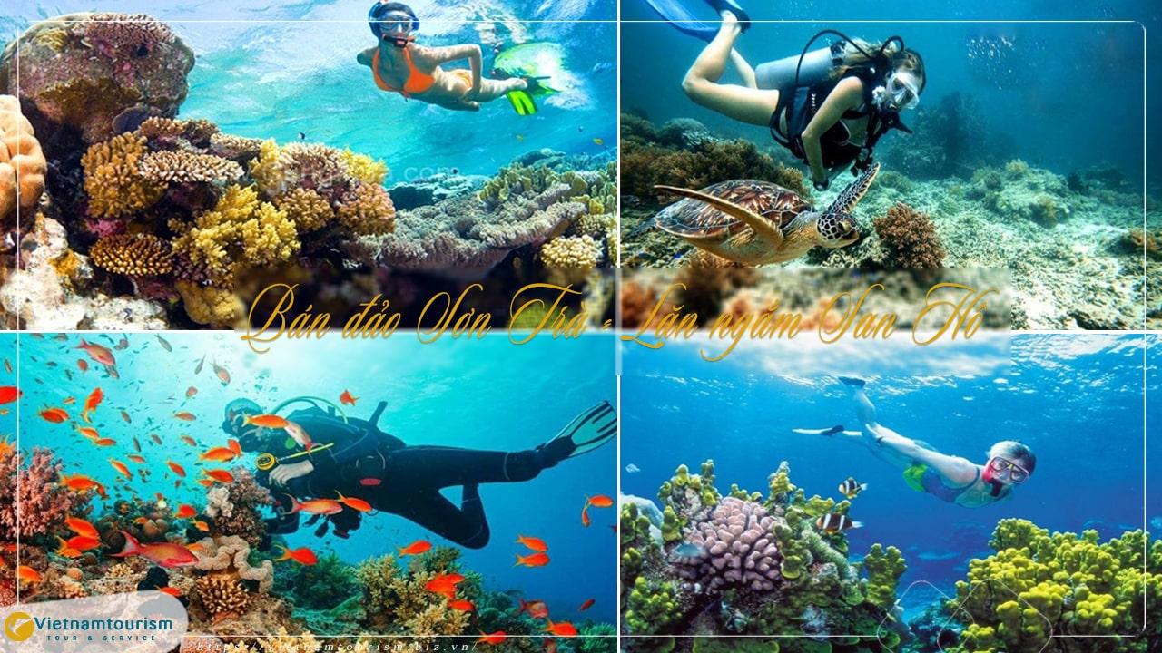 Du lịch Đà Nẵng 1 Ngày – Khám Phá Bán đảo Sơn Trà lặn ngắm san hô