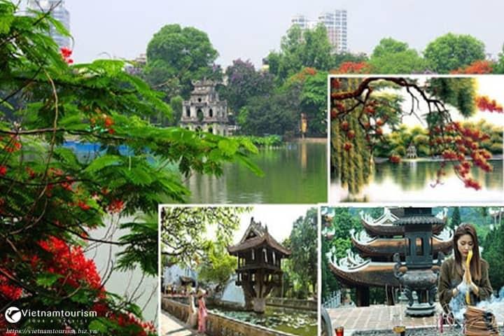 Du lịch Hà Nội – Hà Long – Chùa Hương 3 Ngày 2 Đêm giá tốt từ TP.HCM