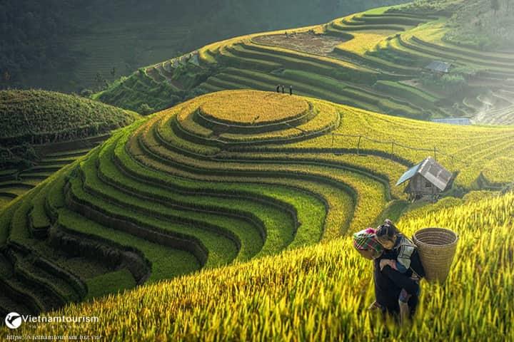 Du lịch Tây Bắc 5 ngày 4 đêm – Hà Nội – Mai Châu – Mộc Châu – Sơn La – Điện Biên – Lai Châu – Sapa từ Sài Gòn