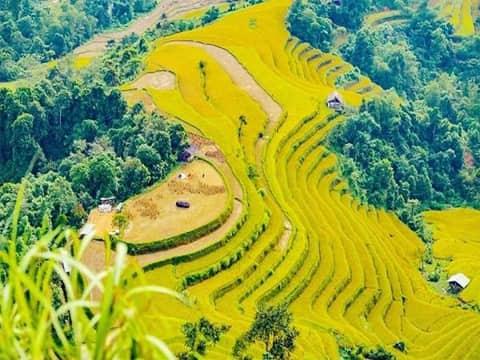 Tour Miền Bắc – Hà Giang – Hoàng Su Phì – Xín Mần – Simacai – Bắc Hà – Sapa 4N3Đ từ Sài Gòn