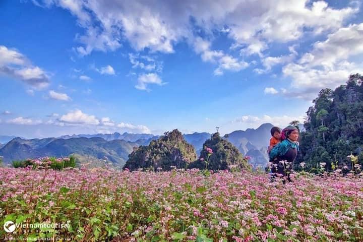 Tour Miền Bắc – Hà Nội – Hạ Long – Hà Giang 5 ngày 4 đêm từ Sài Gòn 2021